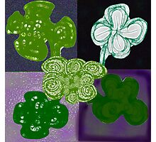 Quintet of Clovers Photographic Print