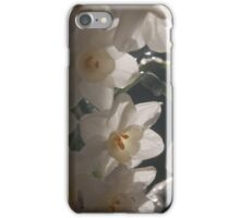 Daffodil 2 iPhone Case/Skin