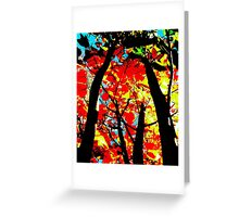 Flame Trees Greeting Card