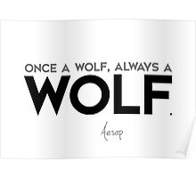 once a wolf, always a wolf - aesop Poster