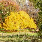 Tree Park Aglow by Elaine Teague