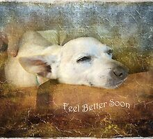 Feel Better Soon by Susan Werby