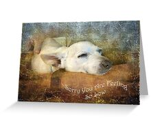 Sorry You Are Feeling So Low Greeting Card
