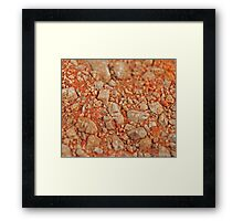 Brecciated Conglomerate Framed Print
