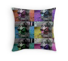Raik der Poser, Hund, Dackel, Dog, puppy Throw Pillow