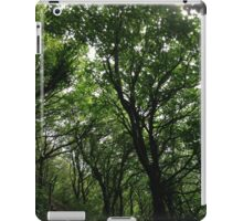 Forest Path. iPad Case/Skin