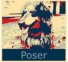 Raik der Poser, Hund, Dackel, Dog, puppy Photographic Print