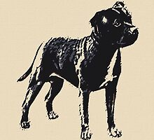 Staffordshire Bull Terrier - Conte Style by HeckaDoodleDo