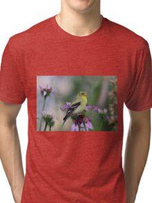 American Goldfinch - female Tri-blend T-Shirt