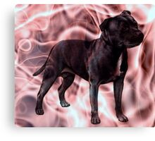 Staffordshire Bull Terrier - Pink Smoke Canvas Print