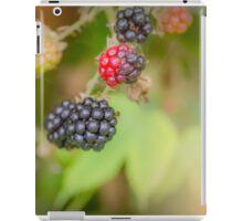 Lovely Blackberries iPad Case/Skin