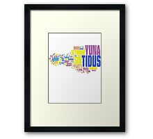 Final Fantasy X Word Cloud Framed Print
