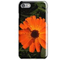 flower of the morning iPhone Case/Skin