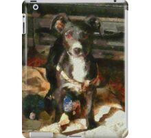 A Puppy Can Never Have Too Many Toys iPad Case/Skin