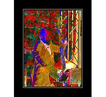 Double Bass Player Photographic Print