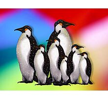 Penguin Family in Snow on Multi-Colored Background Photographic Print