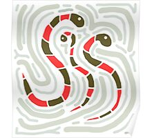 Red snakes Poster