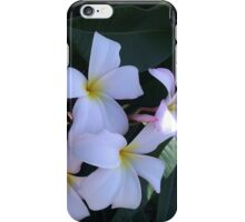 White Plumeria iPhone Case/Skin