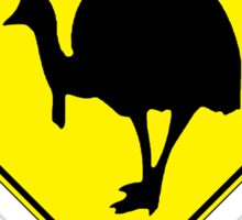 TOWNSVILLE - QUEENSLAND, AUSTRALIA, CASSOWARY! Sticker
