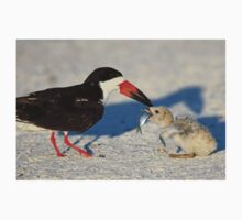 Black Skimmer 3:Successful transfer-Chick now has fish! T-Shirt