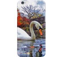 White Swan Under Bridge iPhone Case/Skin