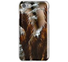 Afternoon Ferns iPhone Case/Skin