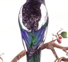 Magpie King Sticker