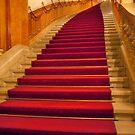 Plush Velvet Steps by phil decocco