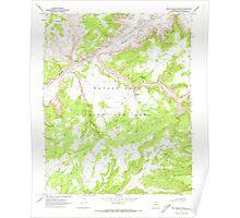 USGS TOPO Map Arizona AZ Red Willow Spring 313076 1970 24000 Poster