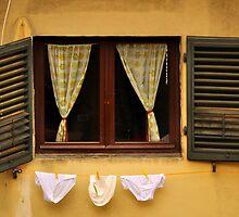 Tuscan Undies by Tiffany Dryburgh