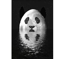 panda water planet Photographic Print