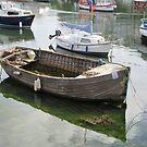 Clinker Boat Reflections by lezvee