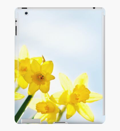 Yellow Spring Daffodils iPad Case/Skin