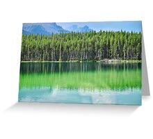 Pine Reflection Greeting Card
