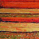 Orange Stripes by Robin Monroe