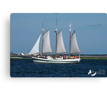 Sail Boat in Charleston Harbour Canvas Print
