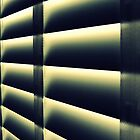 Cheap Motel Room Blinds by Diane Arndt