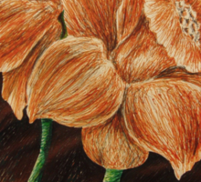 Orange Daffodils  Sticker