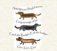 Soft Wiener, Playful Wiener... Hoodie