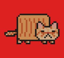Joe the (Nyan) Cat from Rooster Teeth by camink