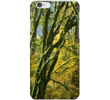Mossy Trees in Autumn iPhone Case/Skin