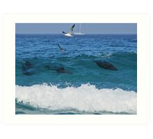 Sardines are running... Art Print