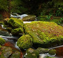 Snug Falls Down Stream by Chris Cobern