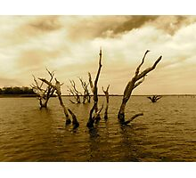 Lake Somerville Photographic Print