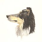 Faithful Collie by Equinspire