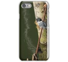 Kingfisher on a wire iPhone Case/Skin