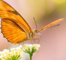 Butterfly - Julie Heliconian Sticker
