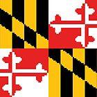 8-bit Maryland Flag by JoeyHawkins