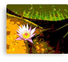 Pink Water Lily Photograph Canvas Print