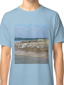 Grey Seals on the Norfolk Coast Classic T-Shirt